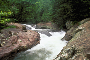 Coosa-North-Georgia_Waters-Creek_300x200.png